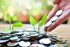 קרן גידור | קרנות גידור